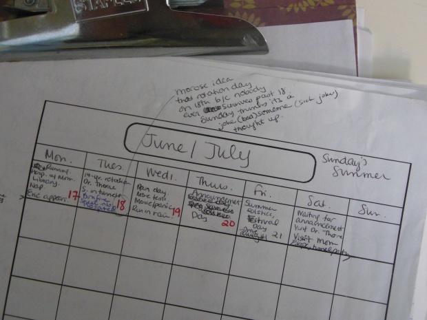 Plotting Calendar